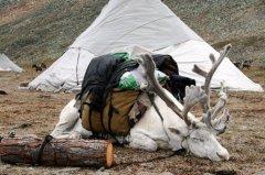 mongolei26.jpg